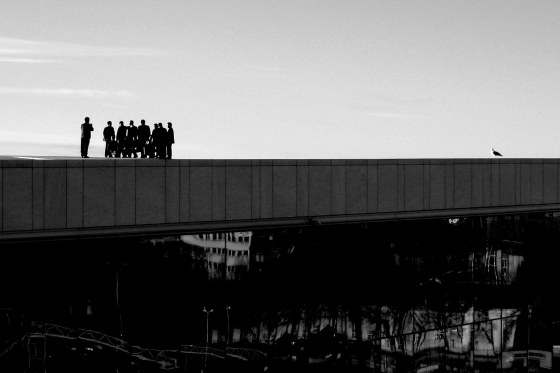 On the roof of the Oslo Opera house 2010